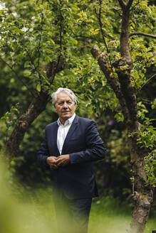 Confident senior businessman standing at a tree in a rural garden - GUSF04049