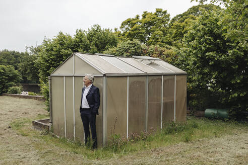 Senior businessman standing at a greenhouse - GUSF04073