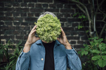 Senior man holding a lettuce head in front of his face - GUSF04082