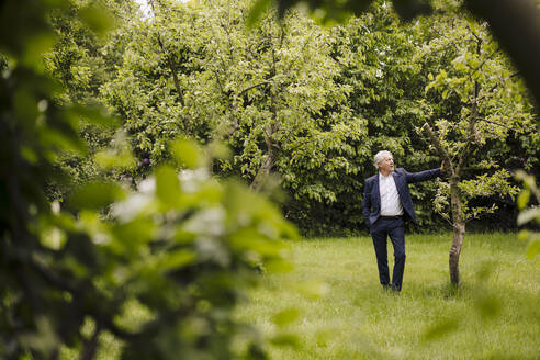Senior businessman standing at a tree in a rural garden - GUSF04148