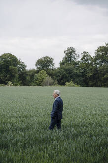 Senior businessman on a field in the countryside - GUSF04154