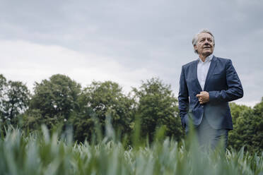 Confident senior businessman on a field in the countryside - GUSF04157