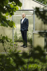 Senior businessman standing in a greenhouse looking up - GUSF04163