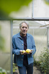 Portrait of a senior man holding organic lemons at a greenhouse - GUSF04166