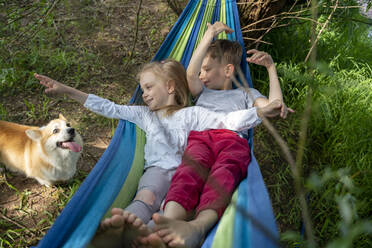 Cute friends looking at dog while relaxing on hammock in forest - VPIF02563