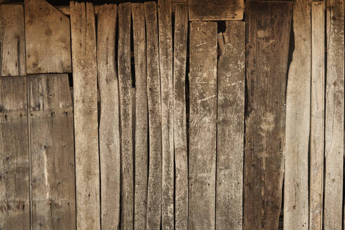 Old wooden wall - BZF00556