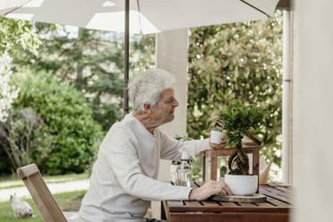Senior man with house plants on terrace - AFVF06710