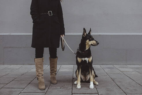 Low section of woman standing with dog on footpath in city - MASF19252