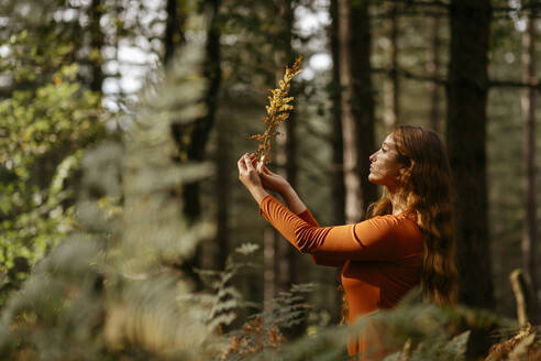 Young woman with long hair holding plant while standing against trees in forest - TCEF00940