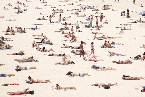 Bondi Beach, Sydney, New South Wales, Australia, Pacific - RHPLF16225