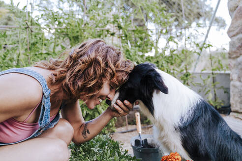 Close-up of happy woman playing with border collie in vegetable garden - EBBF00453