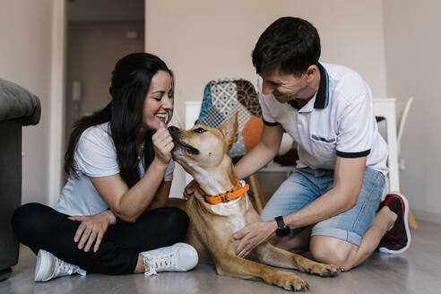 Couple playing with dog while sitting on floor at home - EGAF00441