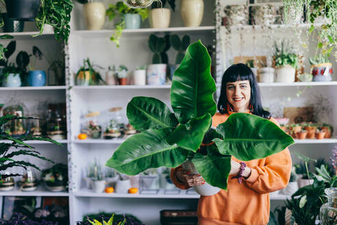 Woman holding big plant in the flower shop. Florist, natural houseplant decoration. Shopping. - ADSF02623