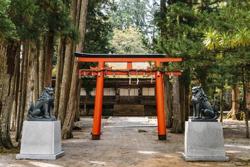 Statues besides torii gate at Koyasan, Japan - EHF00623