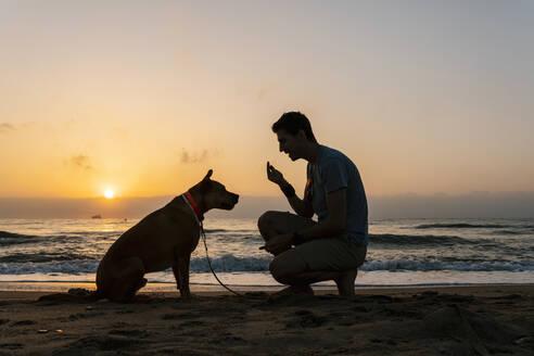 Man talking with his dog at beach during dawn - EGAF00590