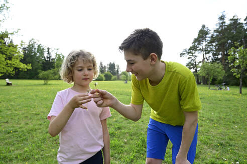 Siblings holding dandelion stem while standing on grassy land against clear sky in forest - ECPF01002