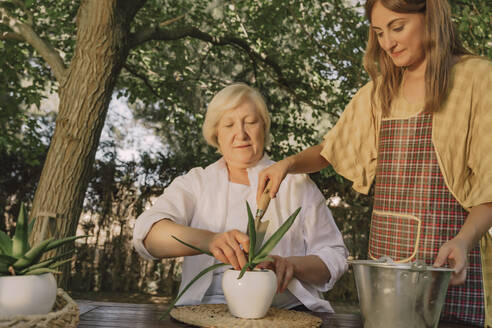 Senior woman with daughter planting on table in yard - ERRF04154