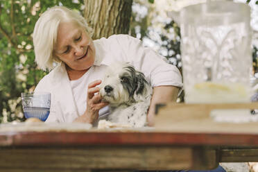 Smiling senior woman playing with dog while sitting at table in yard - ERRF04163