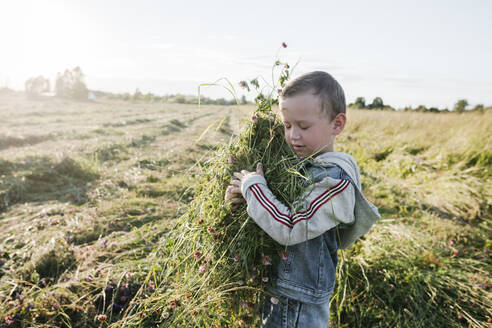 Boy with closed eyes holding hay of clover - EYAF01228