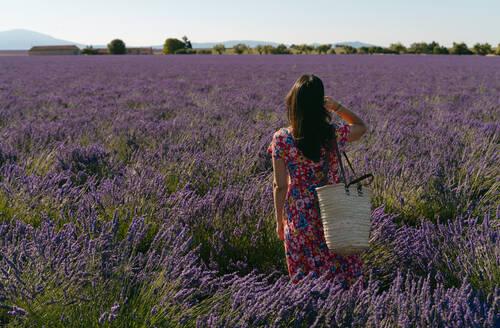 Woman standing in vast lavender field - GEMF03978