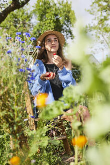 Thoughtful young woman holding strawberries while sitting in garden - UKOF00047