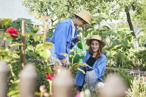 Female friends wearing hats watering plants in garden - UKOF00050