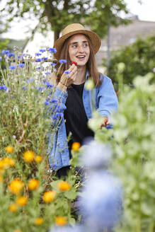 Smiling woman wearing hat eating strawberry while sitting amidst plants in garden - UKOF00056
