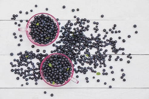 Two bowls of fresh wild blueberries - GWF06696