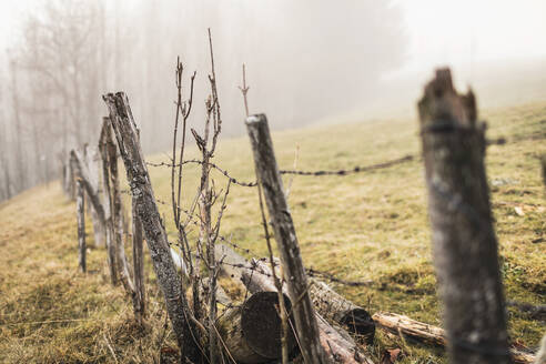 Old barbed wire fence in foggy landscape - DHEF00240