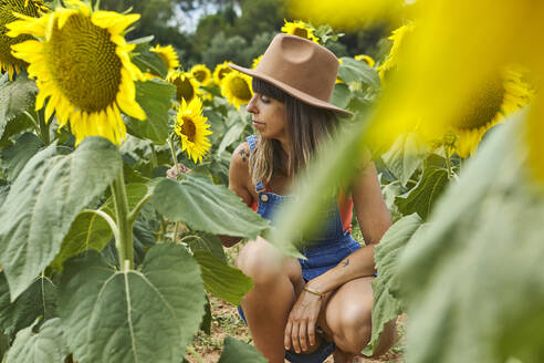 Woman crouching and admiring sunflower in field during summer - VEGF02713