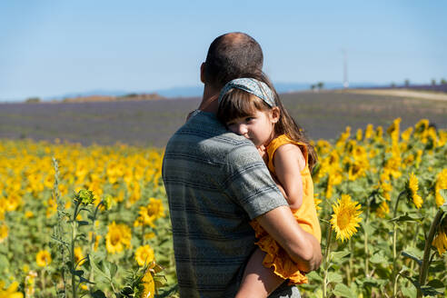 Father carrying daughter in sunflower field during summer - GEMF04076
