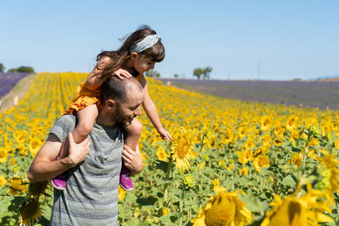 Father carrying playful daughter on shoulders in sunflower field during summer - GEMF04079