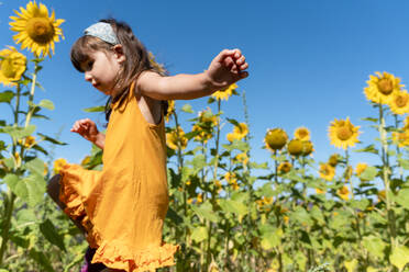 Cute girl walking in sunflower field during sunny day - GEMF04082