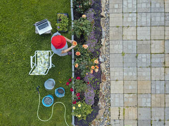 Aerial view of woman sitting on terrace in garden - KNTF05266