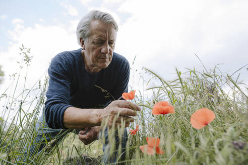 Wrinkled man looking at flower against cloudy sky - GUSF04409