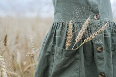 Girl with wheat ears in pocket of green dress - EYAF01264