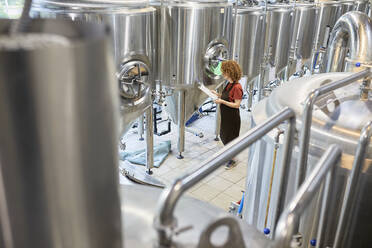Woman working in craft brewery - ZEDF03695
