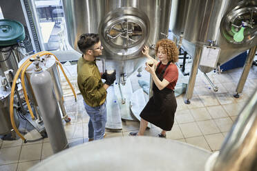 Man and woman working in craft brewery checking quality of a beer - ZEDF03707