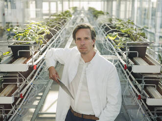 Portrait of a scientist holding tablet in a greenhouse - JOSEF01599