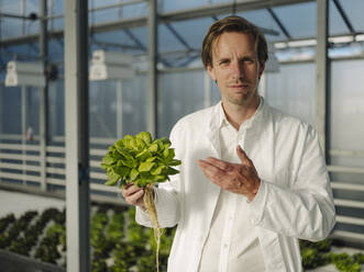 Portrait of a confident scientist holding lettuce in a greenhouse - JOSEF01608