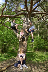 Family relaxing while sitting on tree in forest - ECPF01028