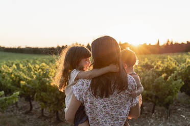 Mother and little daughters in a vineyard at sunset in Provence, France - GEMF04123