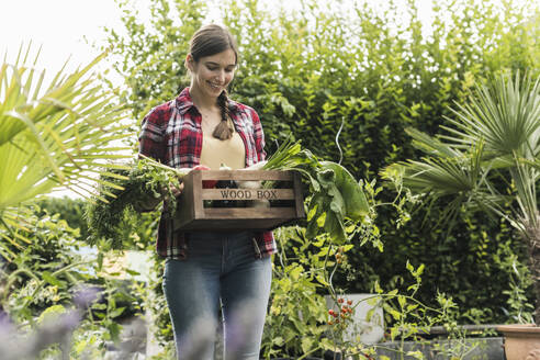 Smiling young woman carrying vegetables in crate while standing amidst plants at garden - UUF21006