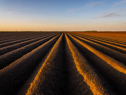 Ploughed field against sky during sunset - NOF00130