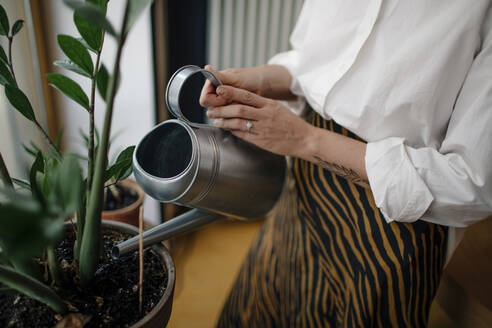 Close-up of female owner watering potted plants in coffee shop - OGF00528