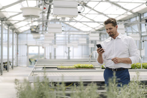 Businessman using mobile phone while standing in greenhouse - JOSEF01745