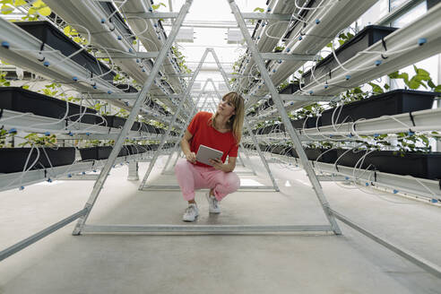 Female entrepreneur with digital tablet looking away while crouching by plants in nursery - JOSEF01772