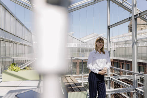 Smiling female professional looking away while standing in greenhouse - JOSEF01811