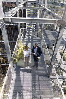Business professionals discussing while standing on footbridge in greenhouse - JOSEF01814