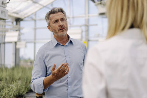Businessman discussing with female coworker while standing in greenhouse - JOSEF01838